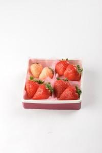 4種食べ比べ苺